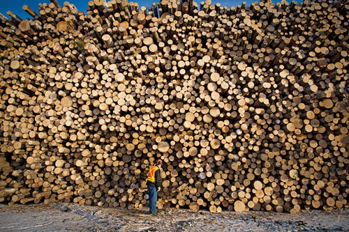Canadian lumber industry to benefit from agreement with Mexico