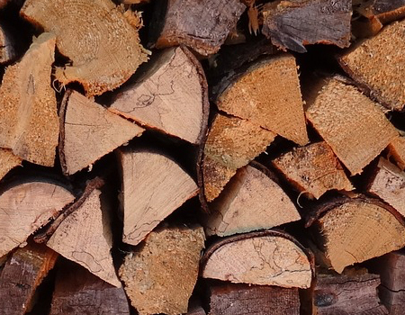 Wood, paper products manufacturers join clean power plan litigation