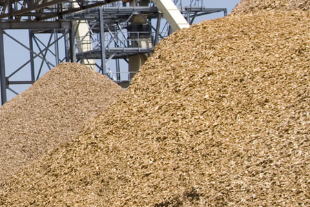 Pulp and Paper Industry production stable in 2015 – production of softwood sawn timber slumps slightly
