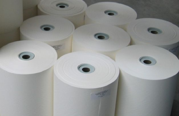 Nippon Paper Industries builds the world's largest cellulose