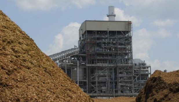 Hadfield Wood Recyclers to supply CHP biomass plant in Wrexham, North Wales