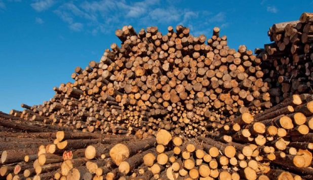 Softwood lumber talks continue despite sticking points