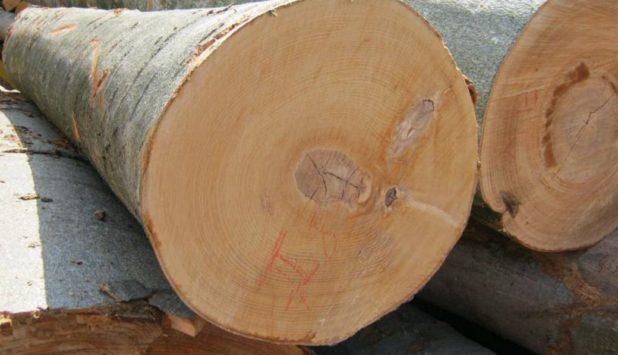 LeMoyen Mill & Timber to acquire Bayou State Lumber's sawmill in LeMoyen