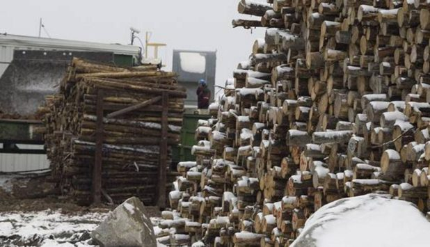 Tembec closed the sale of its Senneterre, Quebec sawmill