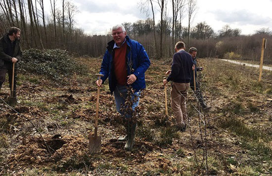 Brussels Employee-led Tree Planting Initiative enters its 7th year