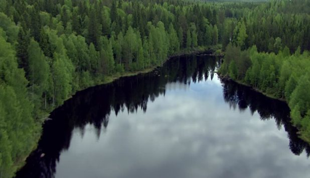 UPM and Tornator sign forestry land sales and wood supply agreements