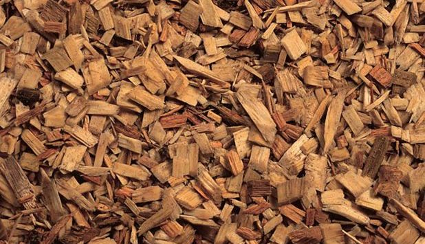Accsys to build Tricoya wood chip plant in Hull, UK