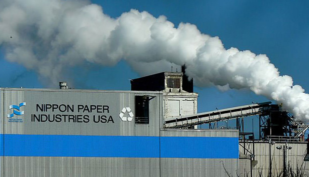 Nippon Paper Industries to shutdown 531,000 tonnes of production capacity