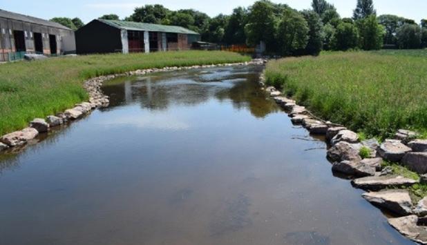 Silverton Mill Remediation Project wins Best Biodiversity Enhancement Award