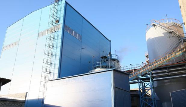 Horizon Pulp & Paper inaugurates new CHP plant in Kehra, Estonia