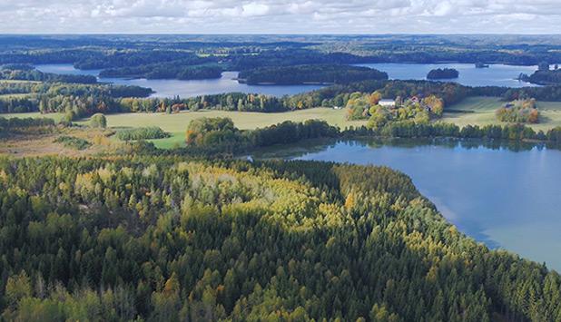 Metsä Group to showcase sustainable forest management in Kirkniemi, Lohja