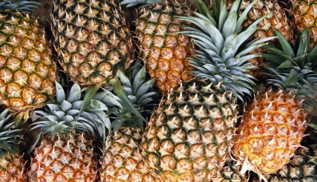 Philippines paper project using pineapple, seen cutting plastics use