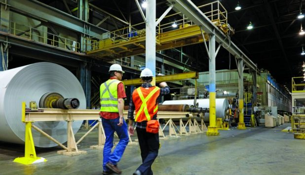 Catalyst to curtail Crofton Mill paper operations